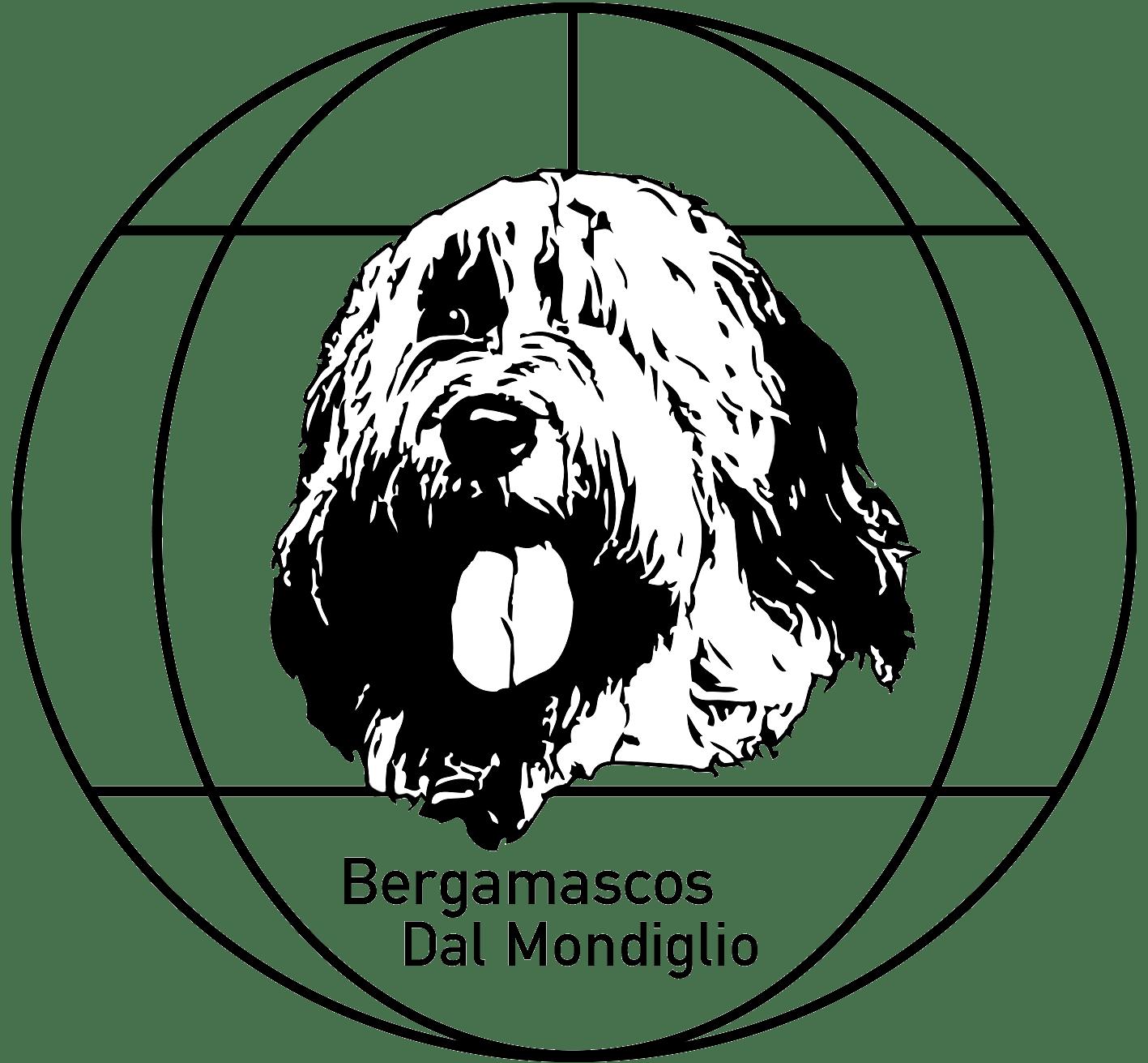 Bergamasker Hirtenhund Dal Mondiglio